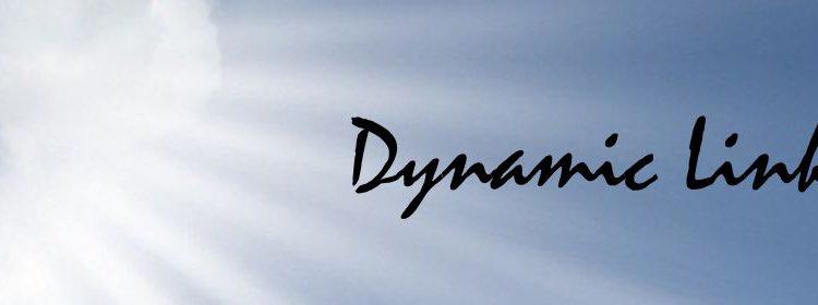 Dynamic Link 2013