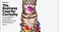 Harvard Business Review Magazine Cover with Cat