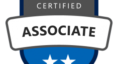 MCP Associate Shield